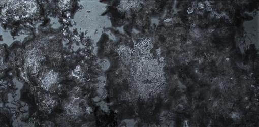 black-antique-mirror-field-tile